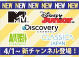 新チャンネル追加!