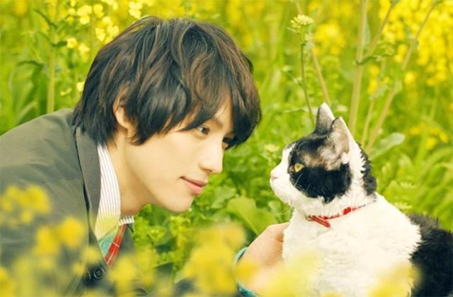 ©有川浩/講談社  ©2018「旅猫リポート」製作委員