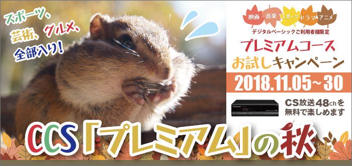 11/5~30 プレミアムコースお試しキャンペーン