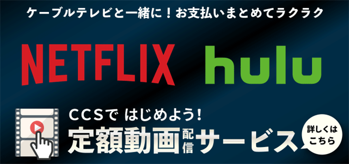 動画配信サービススタート!